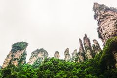 武陵源Yuanjiajie,中国 图库摄影
