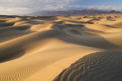 死亡沙丘沙子谷 免版税图库摄影