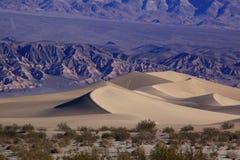 死亡沙丘沙子谷 免版税库存照片