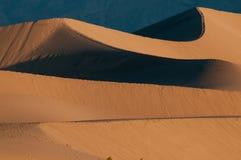 死亡沙丘豆科灌木国家公园沙子谷 免版税库存照片