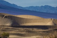 死亡谷的豆科灌木沙丘 免版税库存照片