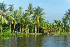 死水在南印度 库存图片