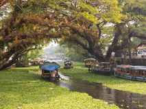死水在Alleppey,印度 免版税图库摄影