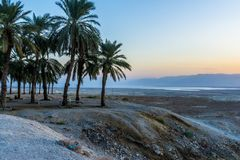 死海和山的看法在Neqev沙漠 以色列 免版税库存照片