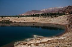 死海在约旦 死海和s的美好的着色 免版税库存照片