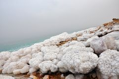 死海海岸1 免版税库存照片