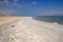 死海海滩 免版税图库摄影