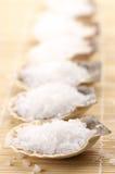 死海腌制槽用食盐  免版税库存照片