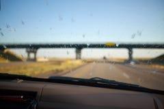 死的臭虫在汽车的挡风玻璃喷溅了 免版税库存照片
