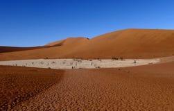 死的Vlei在纳米布沙漠的南部,在纳米布Nacluft国立公园在纳米比亚 免版税库存图片