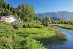 死水湖skadar的montenegro 免版税库存照片