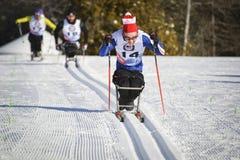 残奥会坐滑雪竟赛者 库存照片