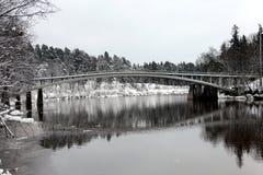 残暴的人河在冬天 免版税图库摄影