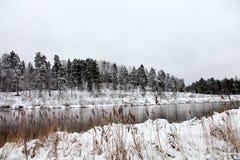 残暴的人河在冬天 库存图片
