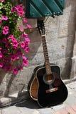 残破的吉他 库存照片