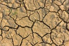 残破的旱田 免版税库存照片