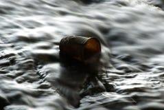 残破的杯子水 库存图片