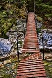 残破的桥梁 库存照片