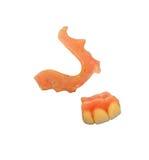 残破的牙齿部分 库存图片