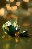 残破的绿色和金子节假日装饰品 图库摄影