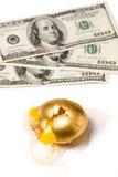 残破的美元金黄的蛋 免版税库存图片