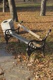 残破的长凳在公园 库存图片