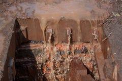 残破的风暴流失 肮脏的水和垃圾进入天沟 库存图片