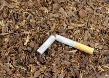 残破的香烟 库存图片
