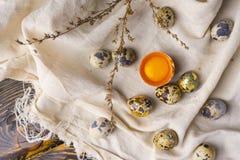 残破的鸡卵黄质在蛋壳怂恿和几鸡和 库存图片