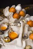 残破的鸡卵黄质在蛋壳怂恿和几鸡和 免版税库存照片