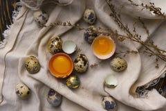 残破的鸡卵黄质在蛋壳怂恿和几鸡和 免版税库存图片