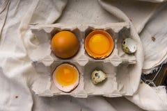 残破的鸡蛋卵黄质在蛋壳的在纸盒蛋盒和鹌鹑蛋 免版税库存图片