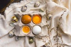残破的鸡蛋卵黄质在蛋壳的在纸盒蛋盒和鹌鹑蛋 库存照片