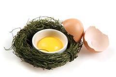 残破的鸡蛋和卵黄质在调味汁杯在鸟巢 免版税图库摄影
