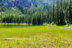 残酷的湖 免版税图库摄影