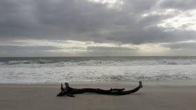 残骸海滩海洋多云天空 库存图片
