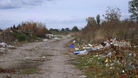 残骸转储路边在森林里 图库摄影