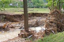 洪水残骸 图库摄影