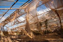 残破和被放弃的温室 库存图片