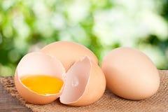 残破的在一张木桌上的鸡蛋用卵黄质和蛋壳有模糊的庭院背景 库存图片