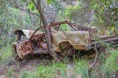 残破的汽车在森林里 库存照片