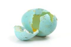残破的蓝色鸡蛋 库存图片