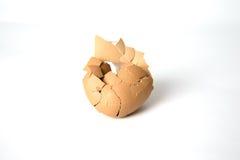 残破的蛋壳 免版税库存照片