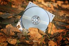 残破的计算机硬盘在森林里 免版税库存图片