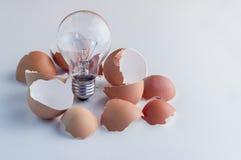 从残破的鸡蛋发光的闪亮指示被拔出 免版税图库摄影