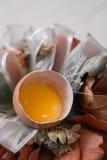 残破的鸡蛋和静物画 免版税库存照片