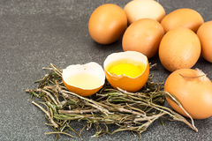 残破的鸡蛋,卵黄质的分离 库存照片