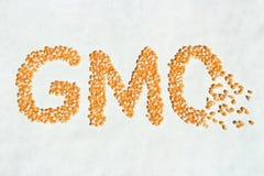 残破的GMO玉米词 库存图片