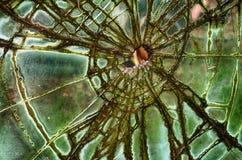 残破,古色古香的玻璃 库存图片