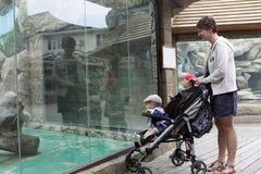 母亲和两个儿子在动物园里 免版税库存照片